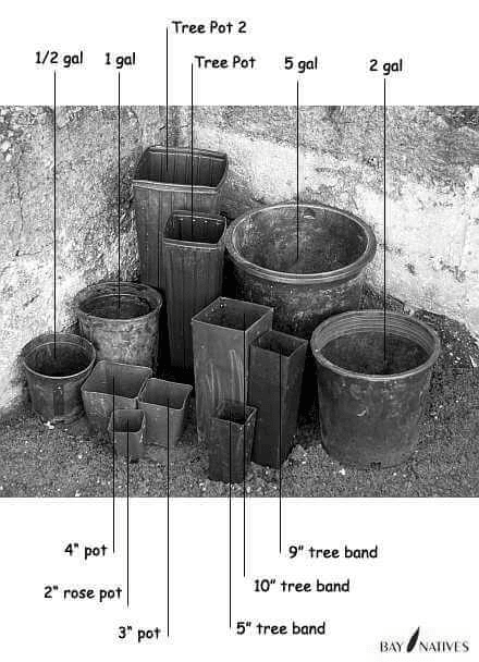 Pot sizes - inches to gallon conversion Image